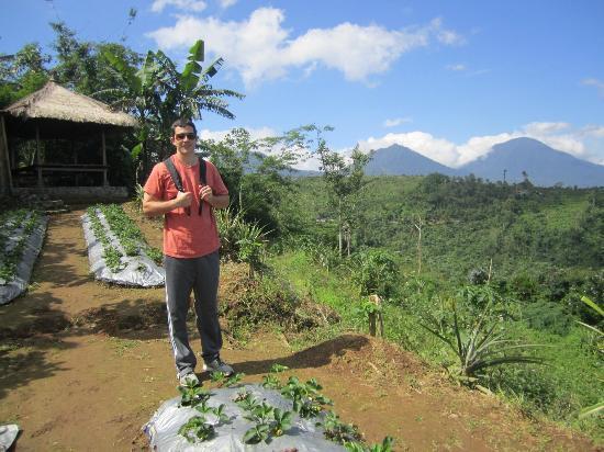 Munduk Moding Plantation: Plantation Tour