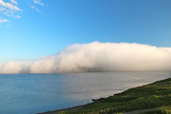 Neddies Harbour Inn: Fog rolling in