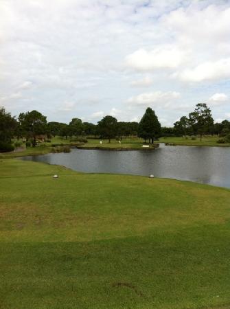 Grand Cypress Golf Club: island hole on east course #5