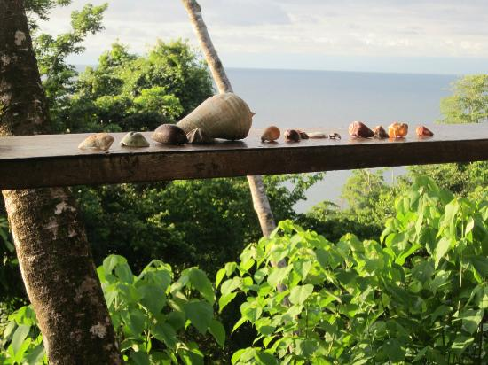 Punta Marenco Lodge: Cabina #9 view