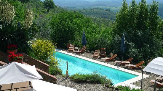 Ventena Vecchia - Antico Frantoio: Pool im Grünen 2