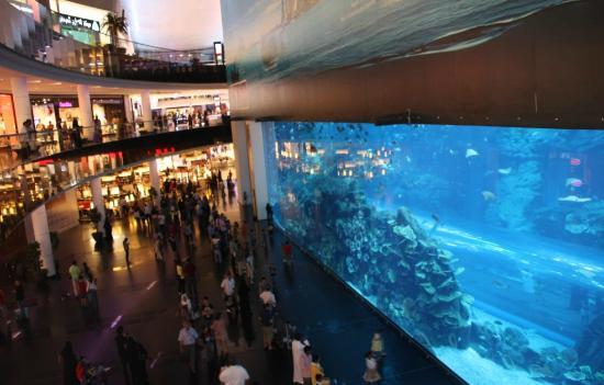 โรงแรมอาราเบียนปาร์ค: Dubai Mall