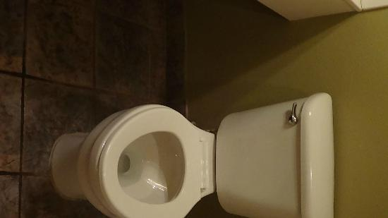 Blue Bay Inn & Suites: No cover for the toilet