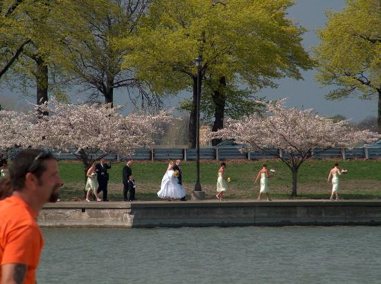 belle isle park wedding on the west end