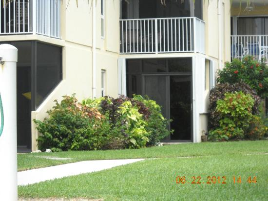 Cayman Reef Resort: condo