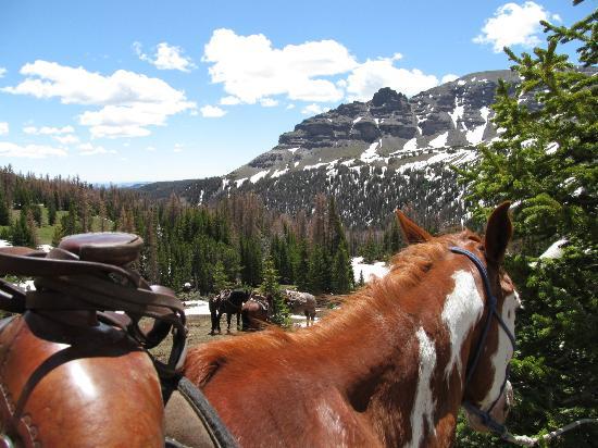 Dubois, Wyoming: day trip 