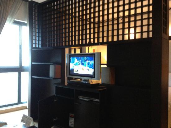 Dubai Park Hotel: tv