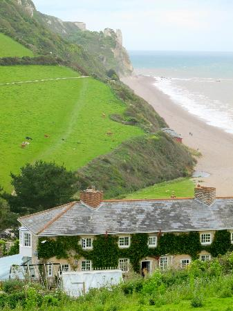 Masons Arms: excellent stretch of coastal path...