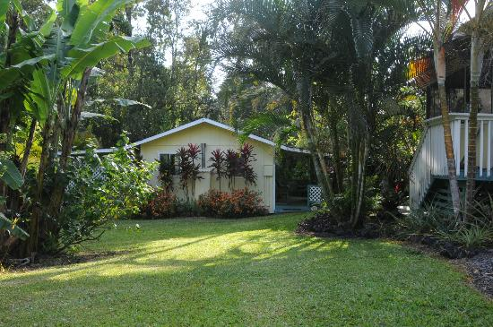 Coconut Cottage Bed & Breakfast: Bungalow