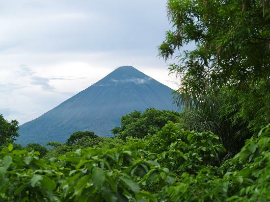 La Via Verde - Organic Farm and B&B: view of the volcano from the shared deck