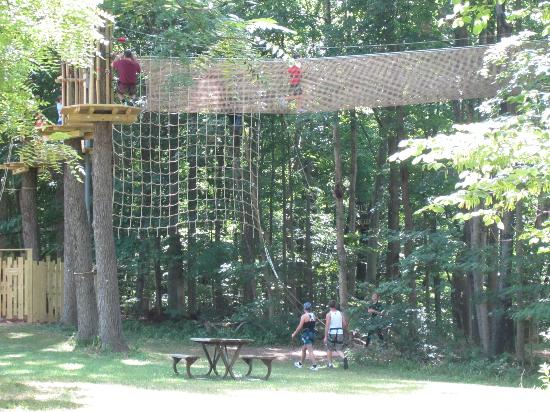 Go Ape Treetop Adventure Course : See not that high above... that you can tuck and roll down lol