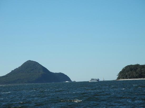 """Boathouse Resort Tea Gardens: view from the boat """"The Wally"""" M.V. Wallamba"""
