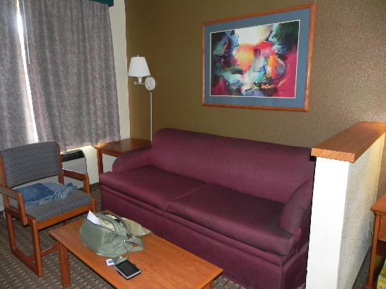 Comfort Inn & Suites San Francisco  Airport North: room