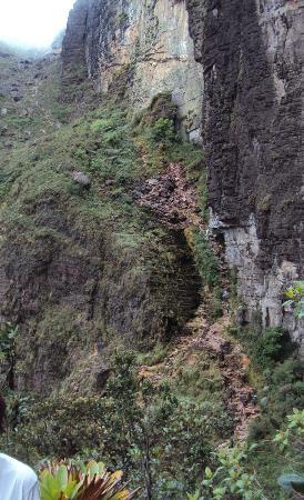 Parque Nacional do Monte Roraima: Caminho difícil.....