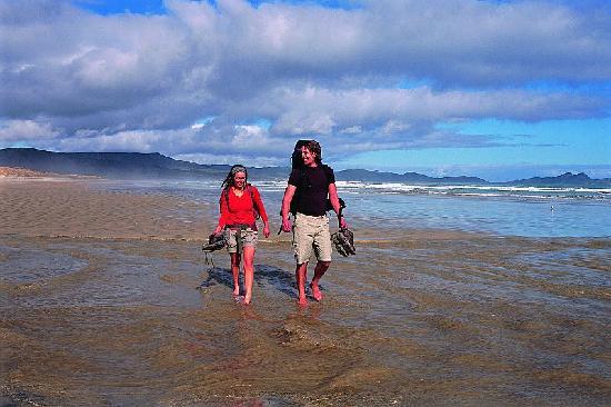 Kiwi Wilderness Walks: getlstd_property_photo