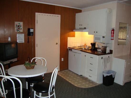 High Falls Bay Cottages, Camping & Waterpark: The kitchenette inside of the room