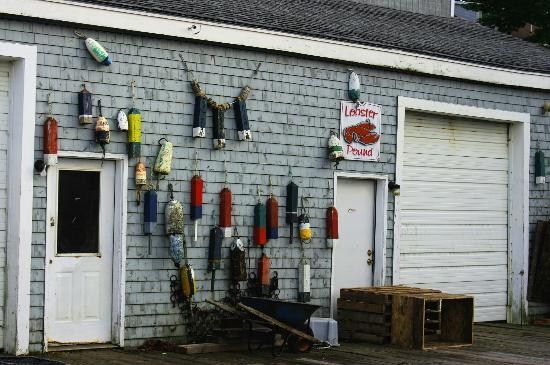 Eastport Chowder House: lobster pound decorations