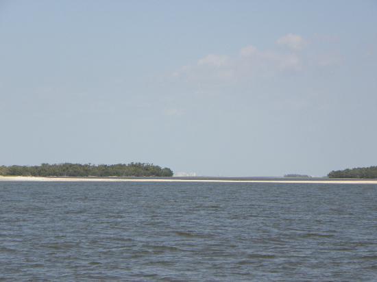 Everglades National Park Boat Tours: 10000 Islands Boat Tour