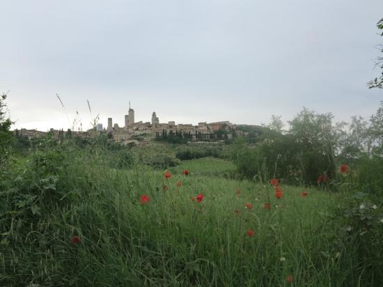 B&B Ponte a Nappo: San Gimignano from the Gardens of Ponte a Nappo
