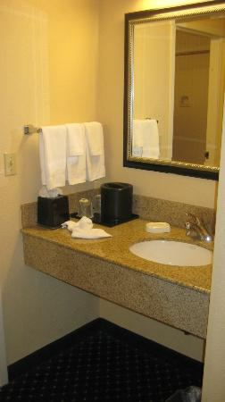 Courtyard by Marriott Orlando Airport: bagno