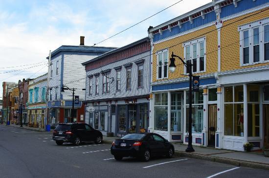 The Pickled Herring: Eastport buildings