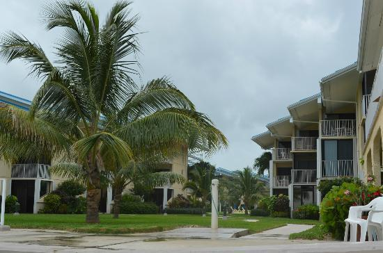 Cayman Reef Resort: A view from the beach looking back at the property