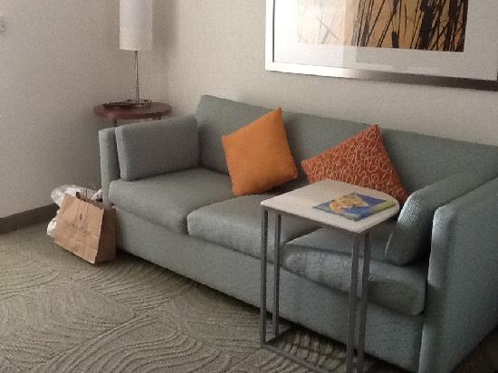 SpringHill Suites Austin Northwest/Arboretum : King Suite