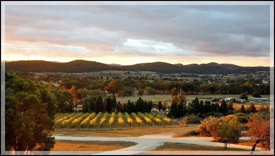 The Mudgee Homestead Guesthouse: Stunning View from the Guesthouse