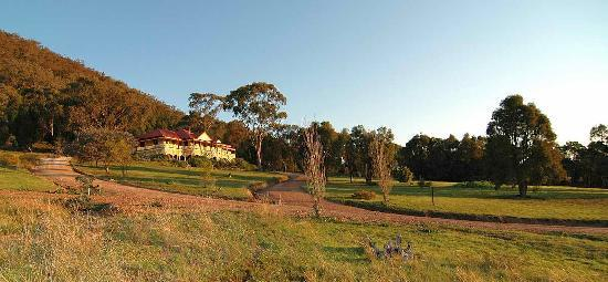 The Mudgee Homestead Guesthouse: Guesthouse Grounds