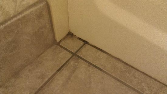 هوم وود سويتس باي هيلتون مونتجمري: Dirty and filth build up on floor corners by bath tub