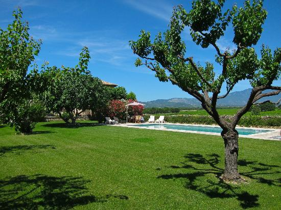 Auberge du Vin : Pool and garden area