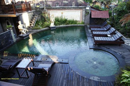 Kunang-Kunang Guesthouse: Pool