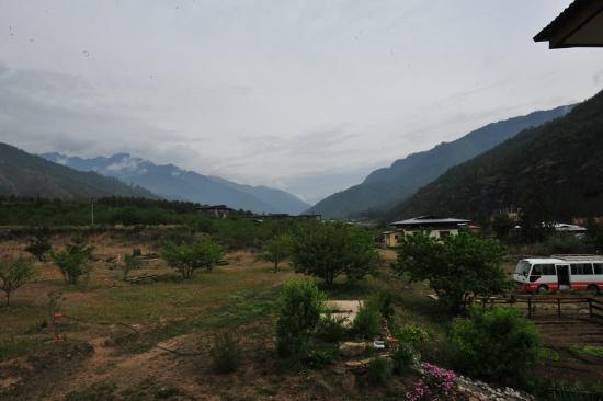 Nivvana Lodge & Homestay: View from the balcony