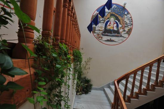 Nivvana Lodge & Homestay: Plants over staircase and painting