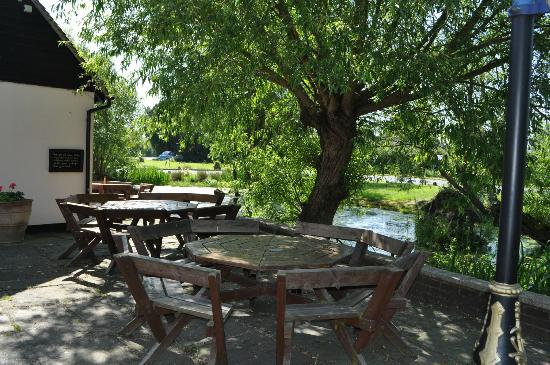 The Peldon Rose : Beer garden and Pond