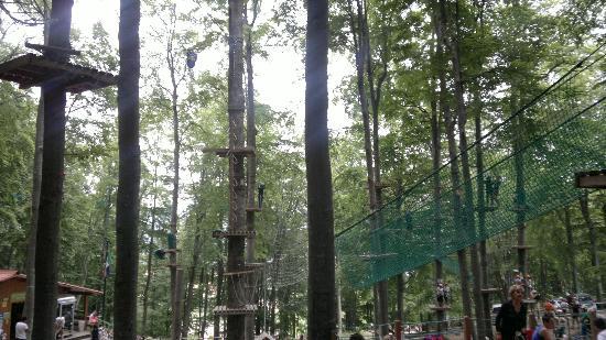 Parco Avventura Bergamo: percorsi