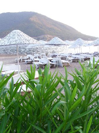 Hotel Eda: Beach