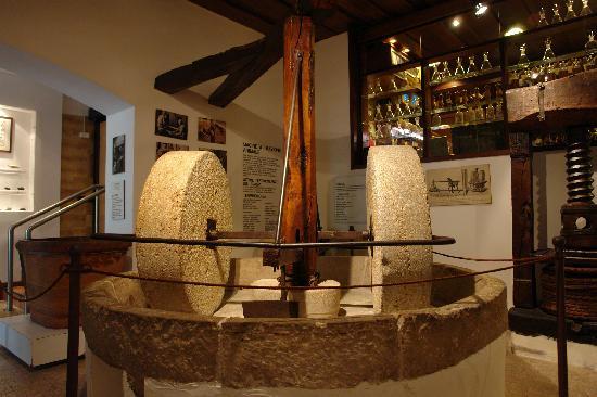 Cisano, Italy: Museum il Museo dell'Olio d'Oliva