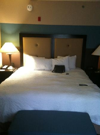 Hampton Inn and Suites Charlotte Airport: bed