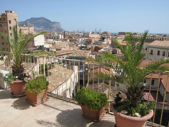 B&B Z.C.: Roof top terrace