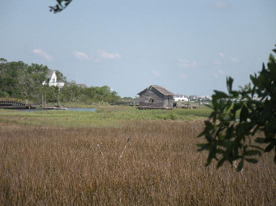 Bald Head Island Beach: View of the salt marsh...very interesting...learn about its importance
