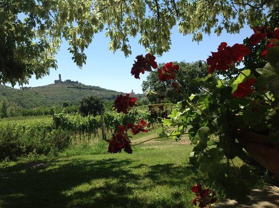 Agriturismo La Pievuccia: paesaggio