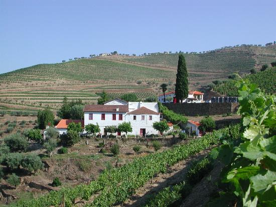 Quinta do Passadouro