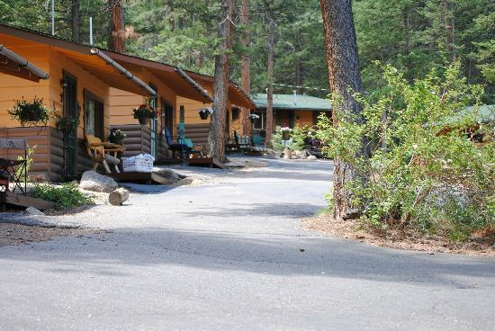 Pine Haven Resort: Pine Haven cabin area