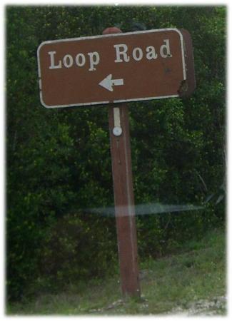 Loop Road: Einfahrt von der US 41