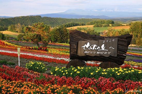 Biei-cho, Giappone: ぜるぶの丘