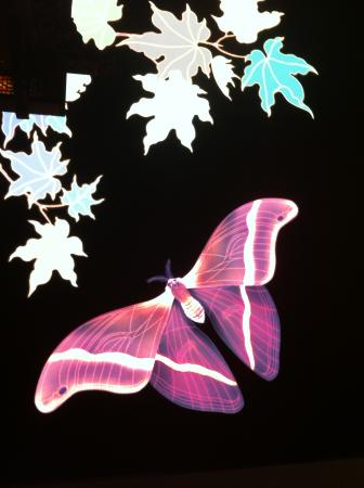 Jumeirah Himalayas Hotel Shanghai: Still of the lobby ceiling LED screen