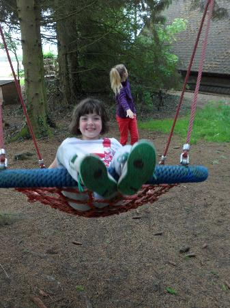 Easthill Farm House: giant swing