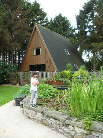 Easthill Farm House: Woodlands