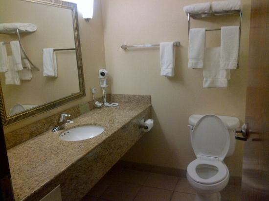 Holiday Inn Express Hotel & Suites Concordia US 81: Bathroom with shower